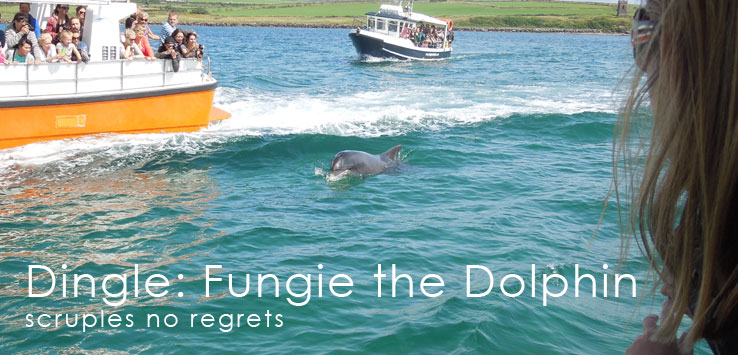 Dingle: Hiking & Fungie The Dolphin