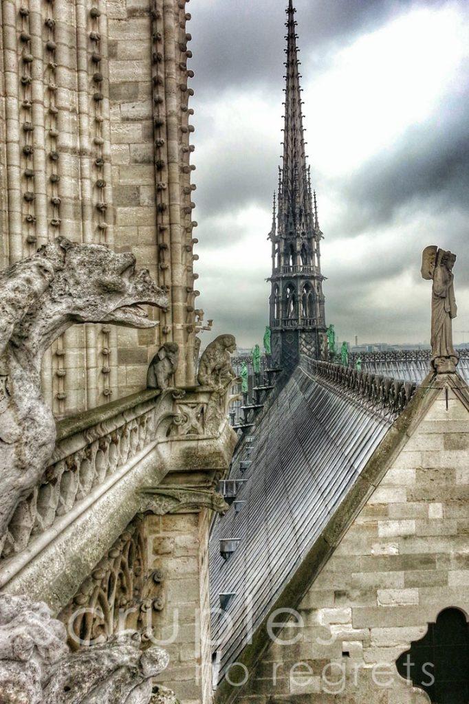 scruples_paris_notredame2