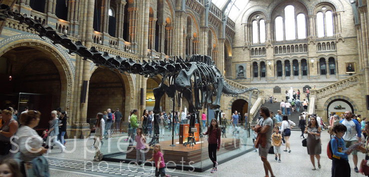 London with Kids: Museum of Natural History